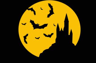Bats 2027875 960 720 9528618 335x220